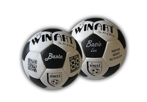 Genuine Leather Training Balls